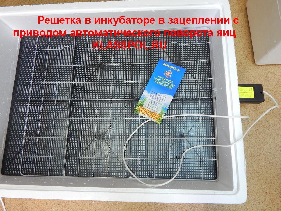 Как сделать инкубатор для яиц своими руками 69